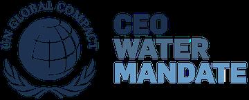 CEO Mandate